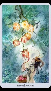seven of pentacles tarot