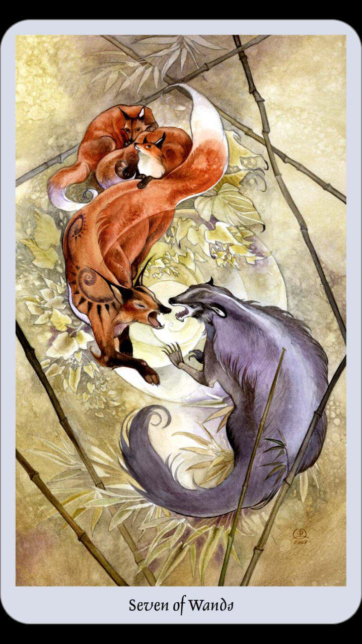 Pisces (February 18 – March 20) Tarot Forecast 2019