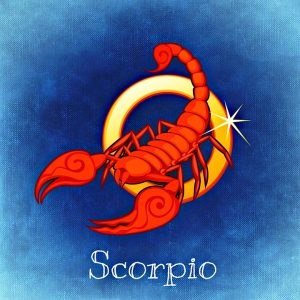 zodia scorpion